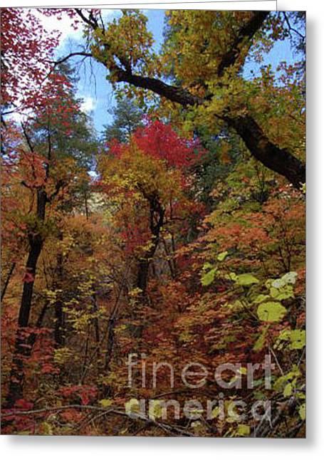 Autumn In Sedona Greeting Card