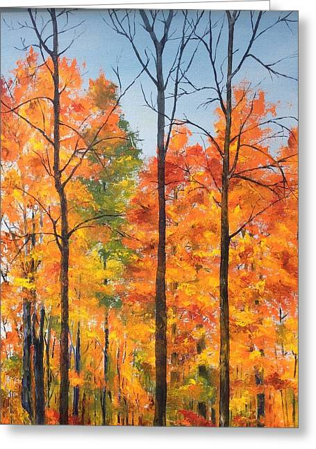 Autumn In South Wales Ny Greeting Card