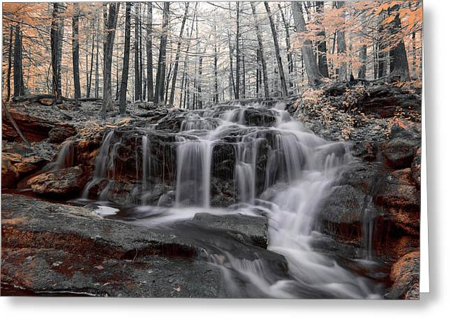 Autumn In Spring Infrared Greeting Card