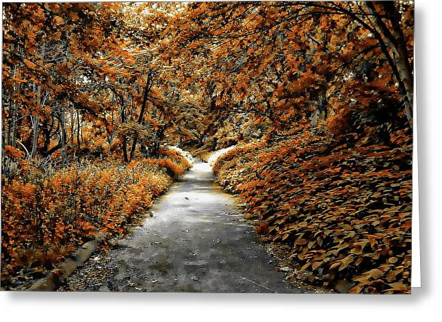 Autumn In Stamford Greeting Card