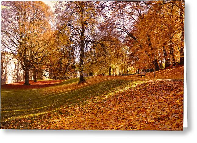 Autumn In The City Park Maastricht Greeting Card by Nop Briex