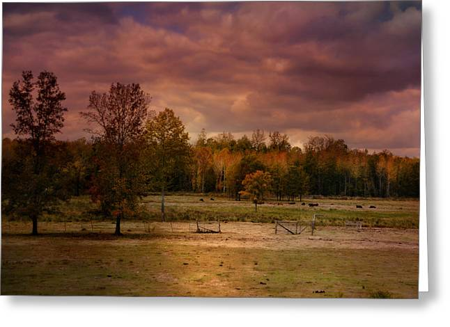 Autumn In The Country Greeting Card by Jai Johnson