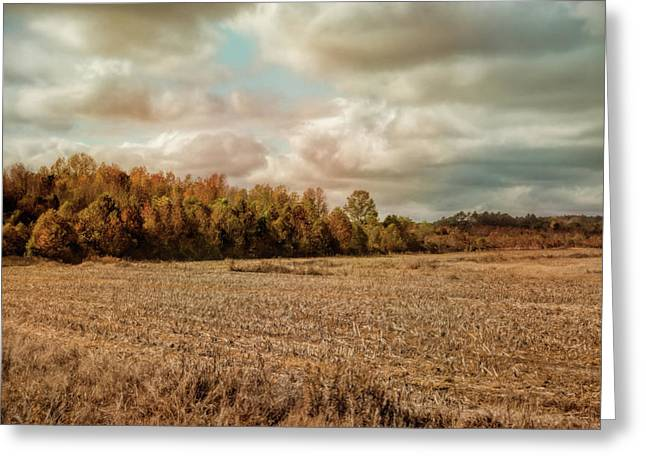 Autumn In The Country Landscape Scene Greeting Card by Jai Johnson