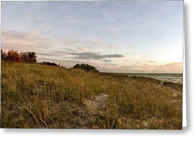 Greeting Card featuring the photograph Autumn In The Dunes by Michelle Calkins