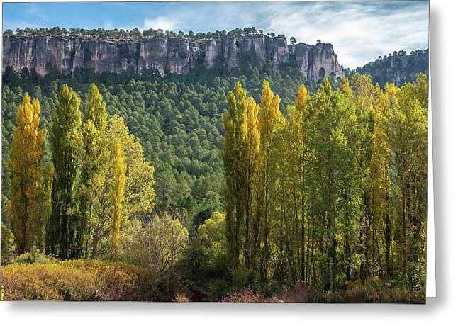 Autumn In The Hoz Del Beteta Gorge. In The Serrania De Cuenca, Spain. Greeting Card