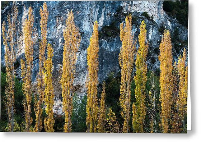 Autumn In The Hoz Del Escabas Gorge. In The Serrania De Cuenca, Spain - 1 Greeting Card