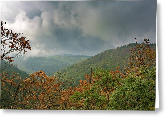 Autumn In The Ilsetal, Harz Greeting Card