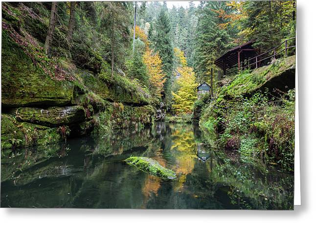 Autumn In The Kamnitz Gorge Greeting Card