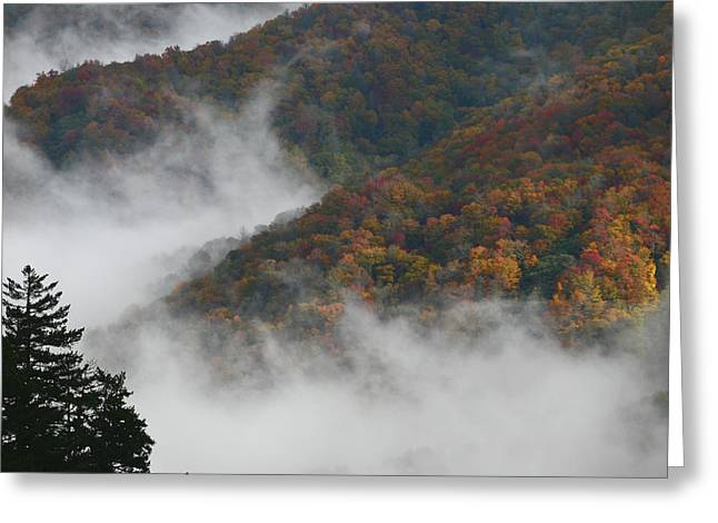 Autumn In The Mountains Greeting Card by James Jones