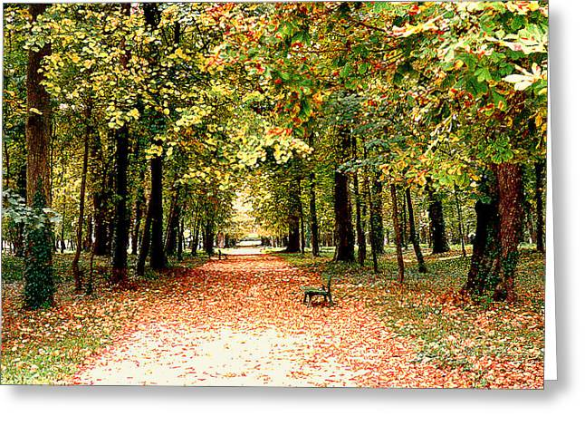 Autumn In The Park Greeting Card by Nancy Mueller
