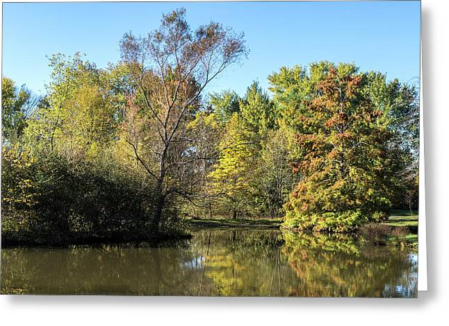 Autumn In The Park. Greeting Card