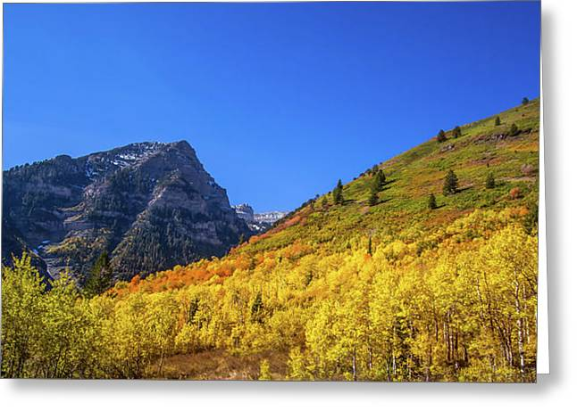 Autumn In The Rockies Greeting Card