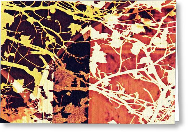 Autumn In The Vineyard 2 Greeting Card by Sarah Loft