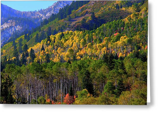 Autumn In Utah Greeting Card