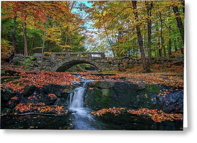 Autumn In Vaughan Woods Photograph By Rick Berk