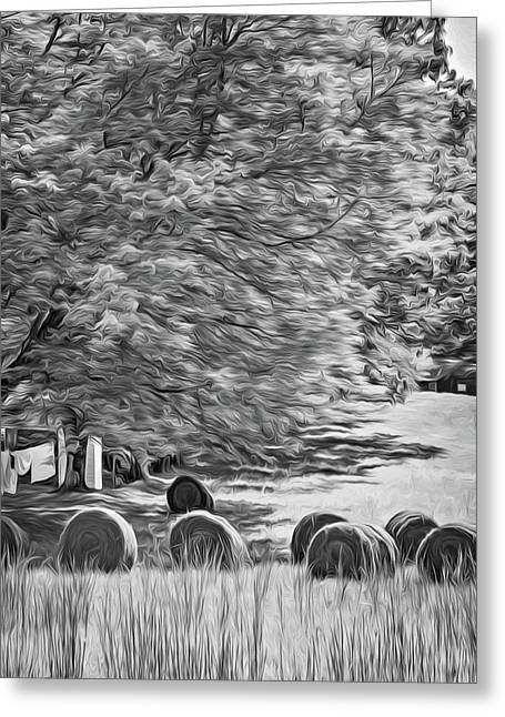 Autumn In West Virginia - Paint Bw Greeting Card