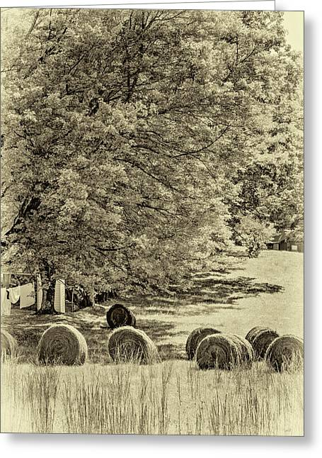 Autumn In West Virginia - Paint Sepia Greeting Card