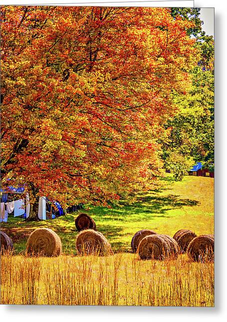 Autumn In West Virginia Greeting Card by Steve Harrington