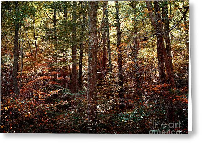 Autumn Is Stirring Greeting Card