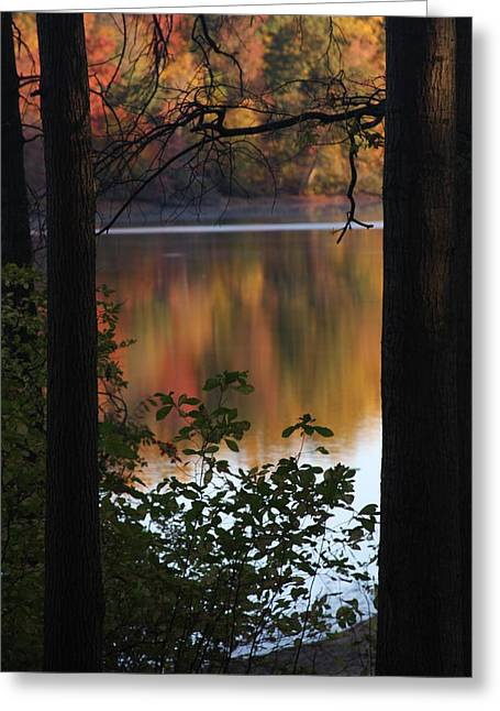 Greeting Card featuring the photograph Autumn Lake by Vadim Levin