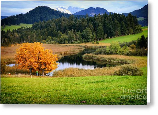 Autumn Landscape And Lake Greeting Card by Sabine Jacobs