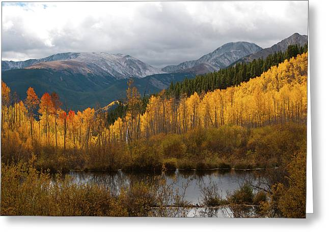 Autumn Landscape From Southern Slopes Of Mount Elbert Greeting Card by Cascade Colors