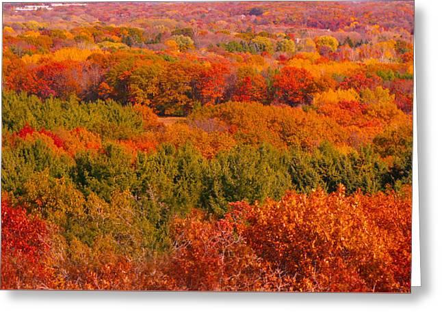 Autumn Landscape Greeting Card by Art Spectrum