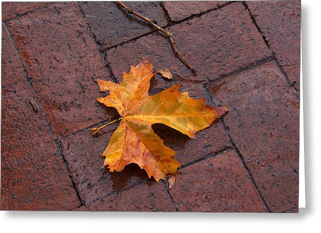 Autumn Leaf On Bricks Greeting Card by Art Block Collections