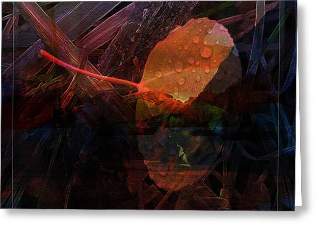 Autumn Leaf Greeting Card by Stuart Turnbull