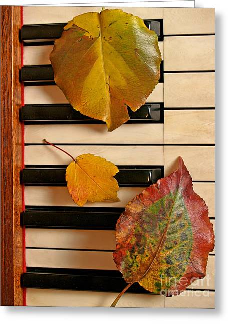 Autumn Leaf Trio On Piano Greeting Card by Anna Lisa Yoder