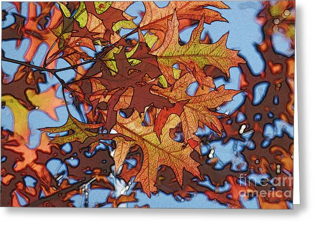 Autumn Leaves 17 - Variation  2 Greeting Card by Jean Bernard Roussilhe