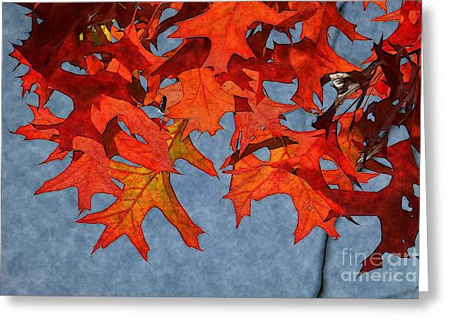 Autumn Leaves 19 Greeting Card by Jean Bernard Roussilhe
