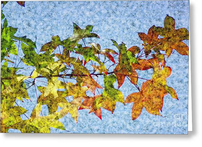 Greeting Card featuring the photograph Autumn Leaves 2 by Jean Bernard Roussilhe