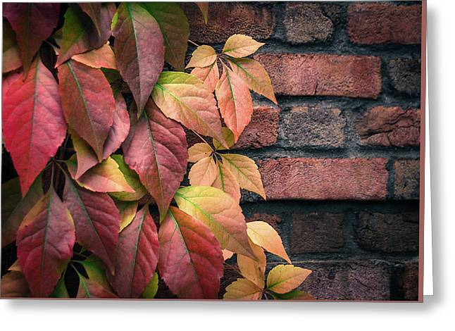 Greeting Card featuring the photograph Autumn Leaves Against Brick Wall by Julie Palencia