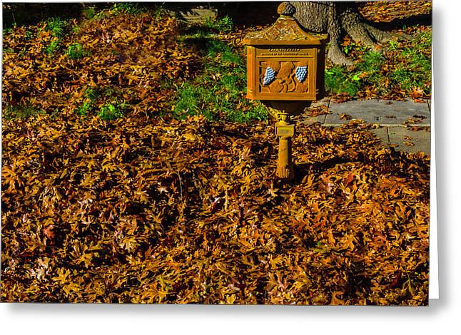 Autumn Leaves And Old Mailbox Greeting Card by Garry Gay
