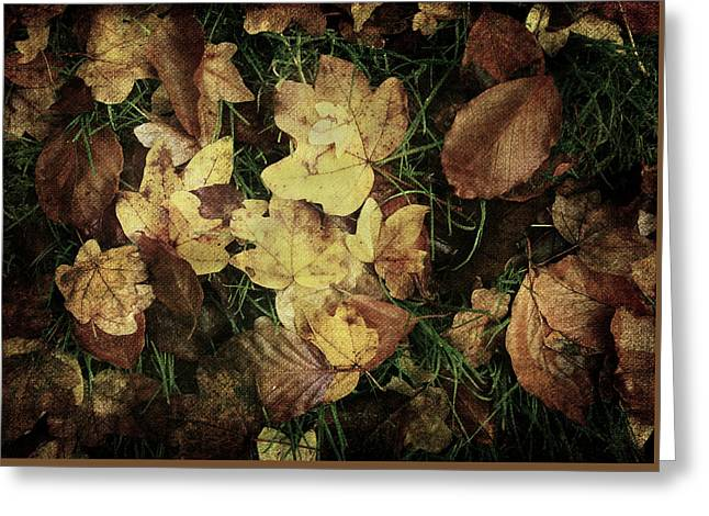 Autumn Leaves Are Falling Down... Greeting Card