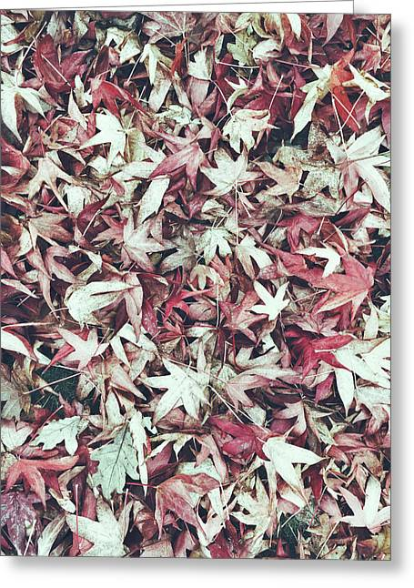 Autumn Leaves Background Greeting Card