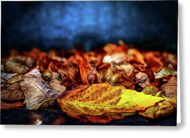 Autumn Leaves Greeting Card by Bob Orsillo