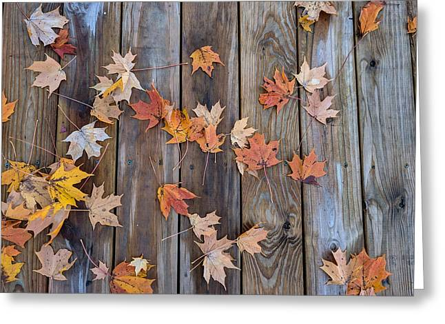 Autumn Leaves Fall Greeting Card