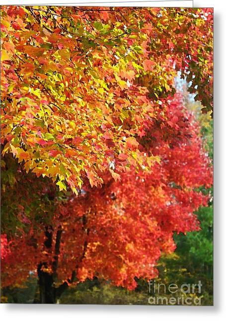 Autumn Leaves Greeting Card by Hideaki Sakurai