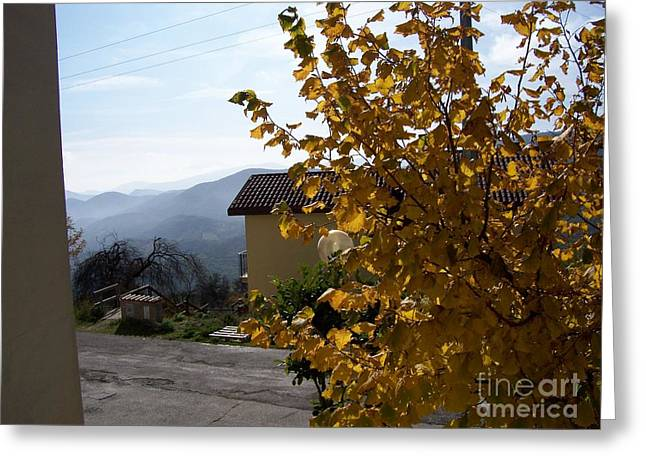 Greeting Card featuring the photograph Autumn Leaves by Judy Kirouac