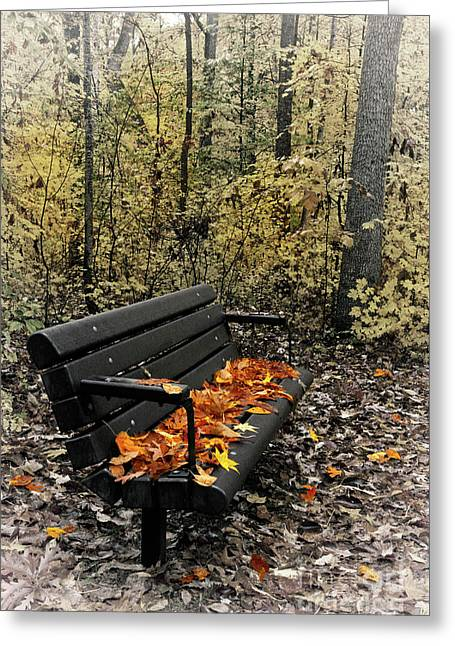 Greeting Card featuring the photograph Autumn Leaves On A Bench by Dan Carmichael