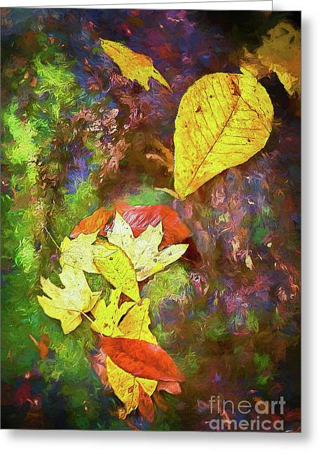Autumn Leaves On Mossy Tree Trunk Ap Greeting Card by Dan Carmichael