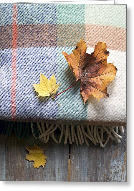 Autumn Leaves On Wool Plaid Blanket Greeting Card