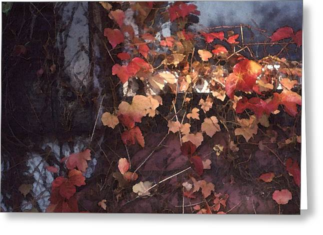 Autumn Leaves With Sun Greeting Card