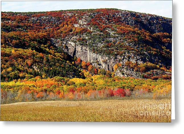 Autumn Ledges Greeting Card by Katie W