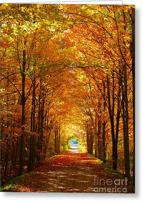 Autumn Light And Leaf Painting Greeting Card