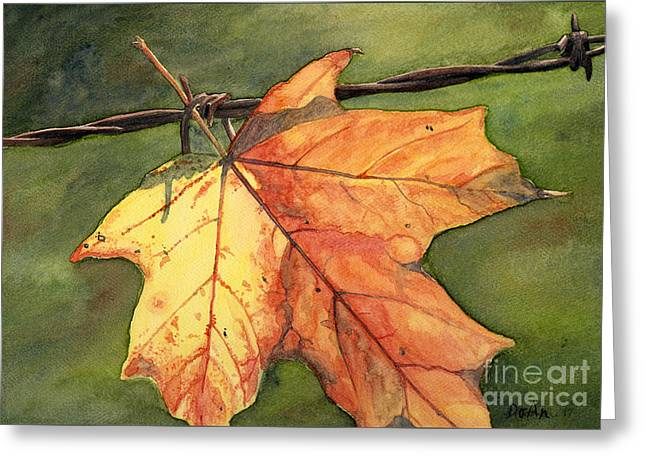 Autumn Maple Leaf Greeting Card by Antony Galbraith