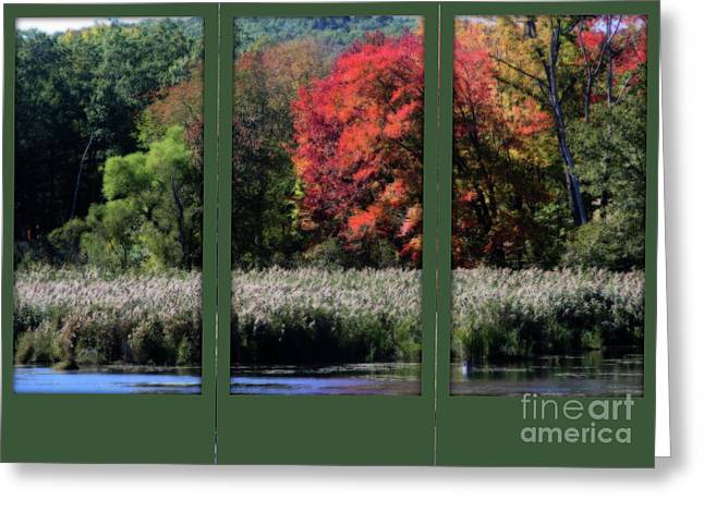 Autumn Marsh Through A Window Greeting Card