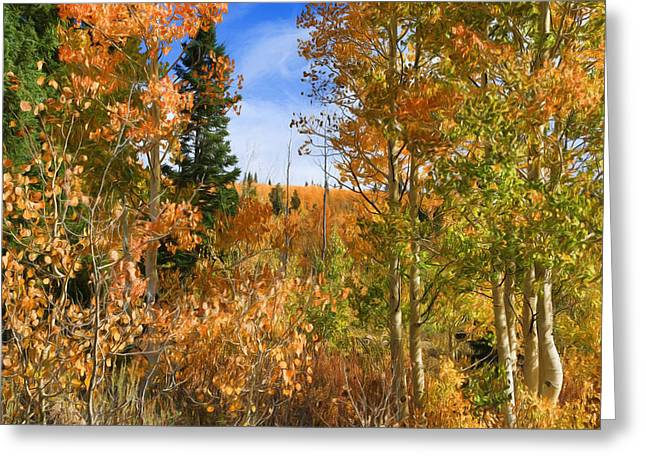 Autumn Meadow View Greeting Card by Donna Kennedy